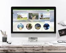 אפיון ועיצוב אתר E-commerce עבור חגור שופס