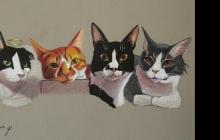 ארבעה חתולים ציור איור רישום בהזמנה