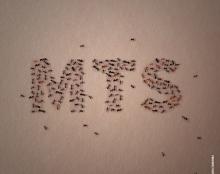 MTS עיסוי וטיפולים (פוסטים לפייסבוק)