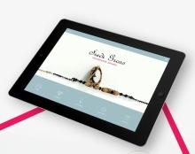 web store interface