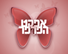 לוגו אפקט הפרפר - Butterfly Effect Logo