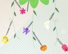 #2 Floraqueen Infographic