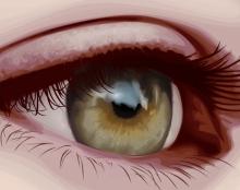 ווקטור - תרגול עין