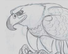 כמה סקיצות-עיצובי דמויות של חיות