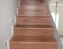 פרקטים על מדרגות בתל אביב