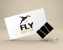 לוגו לחברת אחסון אתרים FlyServer