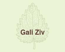 כרטיס ביקור לגלי זיו - אדריכלית נוף