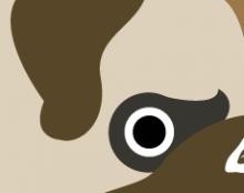 סגנון חיה - כלב פאג