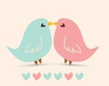 הזמנת חתונה - ציפורים