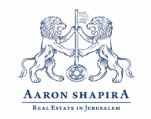 Aaron Shapira - Luxury Real Estate