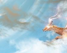 Apocalypse impala