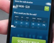 Swifto App