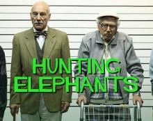האפקטים של לצוד פילים