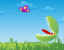 Butterfly Vs Plant