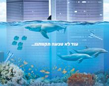 יום העצמאות 100 לישראל מתחת למים