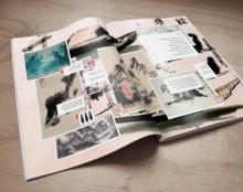 עוברת אורח בדממה עריכה לספר אמן