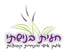 עיצוב לוגו לחגית בנישתי
