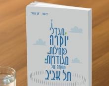 כריכה לספר מגדלי יוקרה כקהילות מגודרות המקרה של תל אביב
