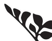 עיצוב תדמית - בית גלריה