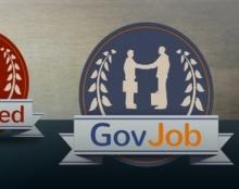 לוגו ואייקונים משניים עבור אתר דרושים למשרות ממשלתיות